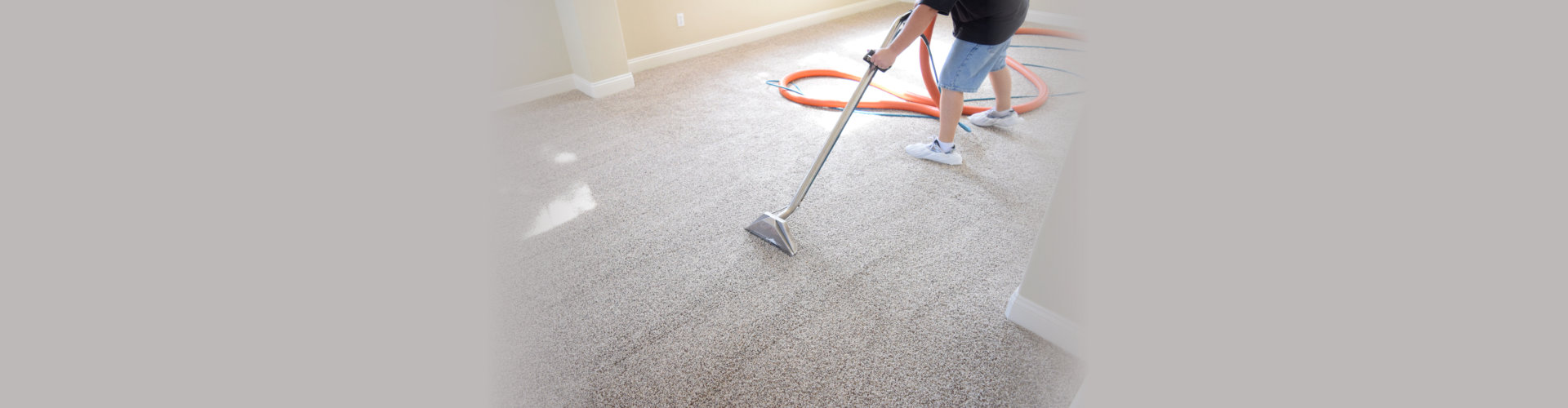 Professional truck mounted carpet cleaning